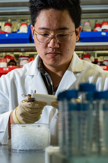 Rice graduate student Jason Guo fills a mold with bioactive hydrogel. Injectable hydrogels can be enhanced with biomolecules and mixed at room temperature to help heal a variety of wounds. Photo by Jeff Fitlow