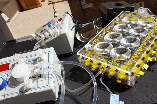 "Researchers from Rice University's Laboratory for Nanophotonics found they could boost the efficiency of their solar-powered desalination system by more than 50% by adding inexpensive plastic lenses to concentrate sunlight into ""hot spots."" (Photo by Pratiksha Dongare/Rice University)"