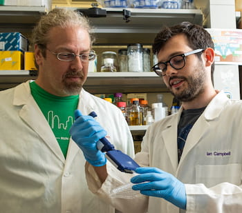 Rice University synthetic biologist Joff Silberg, left, and graduate student Ian Campbell. Photo by Jeff Fitlow
